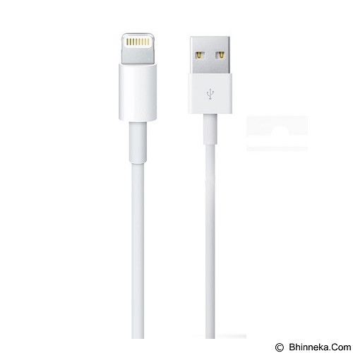 APPLE Kabel Data Lightning iPhone/iPad/iPod (Merchant) - Cable / Connector Usb