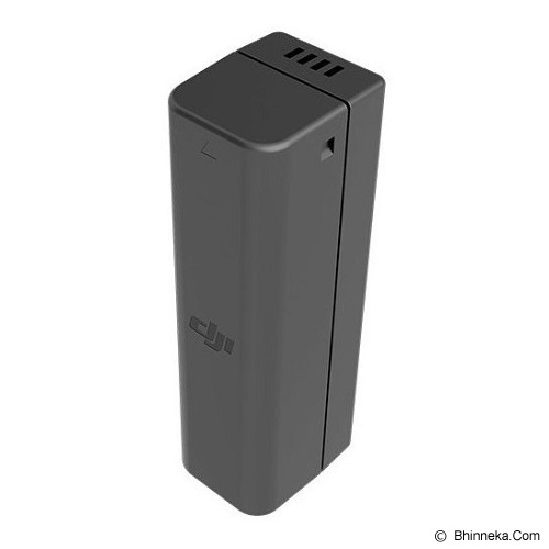 DJI Osmo Intelligent Battery - Camcorder Power Adapter and Charger