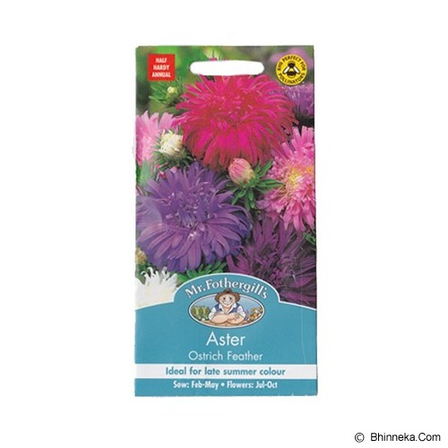MR FOTHERGILLS Aster Ostrich Feather - Bibit / Benih Tanaman Hias