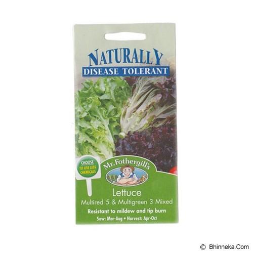 MR FOTHERGILLS Lettuce Multired 5 & Multigreen 3 Mixed - Bibit / Benih Sayuran