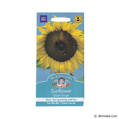 MR FOTHERGILLS Sunflower Giant Single - Bibit / Benih Tanaman Hias