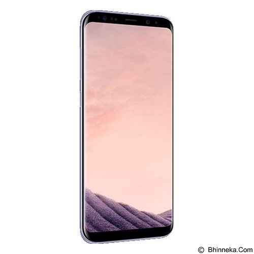 SAMSUNG Galaxy S8 - Orchid Gray (Merchant) - Smart Phone Android