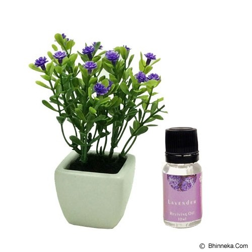 TAKI Flower Pot Diffuser 10ml with Baby's Breath Flower [FL-02C] - Lavender - Aromatherapy / Lilin Terapi
