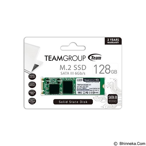 TEAM SSD M2 SATA 228.128GB [TM8PS4128GMC101] (Merchant)