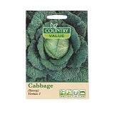 COUNTRY VALUE Cabbage (Savoy) Vertus 3 - Bibit / Benih Sayuran