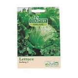 COUNTRY VALUE Lettuce Iceberg 2 - Bibit / Benih Sayuran