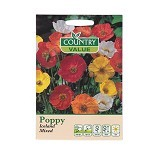 COUNTRY VALUE Poppy Iceland Mixed - Bibit / Benih Tanaman Hias