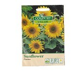 COUNTRY VALUE Sunflower Pacino - Bibit / Benih Sayuran
