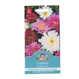 MR FOTHERGILLS Cosmos Double Click Mixed - Bibit / Benih Tanaman Hias