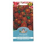 MR FOTHERGILLS Marigold (French) Red Cherry - Bibit / Benih Tanaman Hias