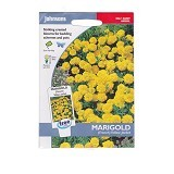 JOHNSONS SEED Marigold (French) Yellow Jacket - Bibit / Benih Tanaman Hias