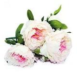 OHOME Bunga Mawar Piony Artificial Dekorasi Interior Eksterior Ruangan [AN-B000247F] - Fuschia (Merchant) - Tanaman Buatan/Artificial