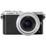 PANASONIC Lumix Mirrorless DMC-GM1K Kit1 - Silver Black - Camera Mirrorless