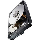 SEAGATE Constellation ES SAS with SED 1TB [ST1000NM0043] - Hdd Internal Sas 3.5 Inch
