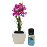 TAKI Flower Pot Diffuser 10ml with Hyacinth Flower [FL-02D] - Ocean Mist - Aromatherapy / Lilin Terapi
