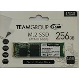 TEAM SSD M2 SATA 228.256GB [TM8PS4256GMC101] (Merchant)