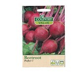 VALUESTORE Beetroot Perfect 3 - Bibit / Benih Sayuran