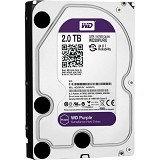 "WD CCTV Purple 2TB 3.5"" [WD20PURX] (Merchant) - Hdd Internal Sas 3.5 Inch"